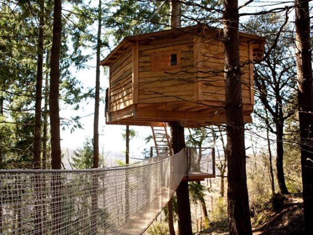Dormire in una casetta sull albero familandia il for Case in legno sugli alberi