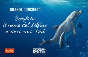 #AcquariodiGenova concorso dai il nome alla delfina